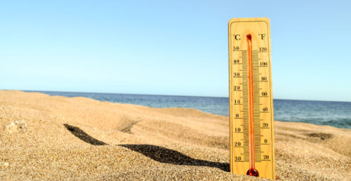 Wooden thermometer sticking out of the sand on a beach.