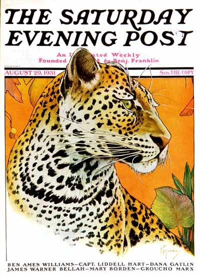 Leopard by Jack Murray from August 29, 1931