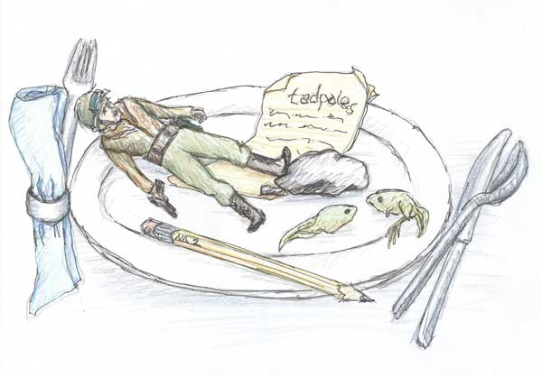 Illustration of a GI Joe figurine, a tadpole, a pencil, a rock, and a school report on a plate. Illustration by Karen Donley-Hayes