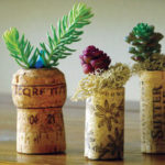 Cork Planters, Photo by Kylee Baumle and Jenny Peterson