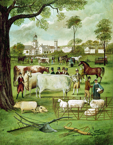 Sheep exhibit at the 1807 Pittsfield Fair. Courtesy: Berkshire Museum, Pittsfield, MA