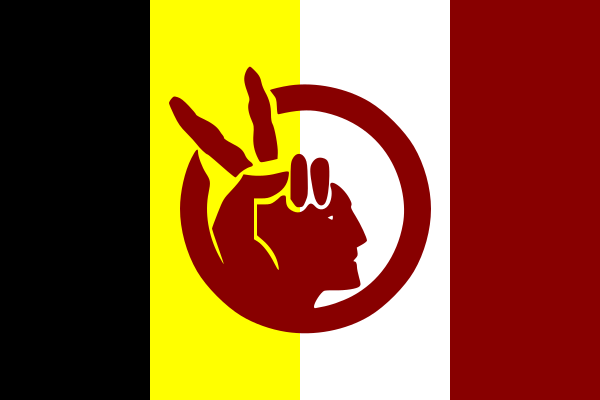 A flag depicting a human hand showing the peace sign.