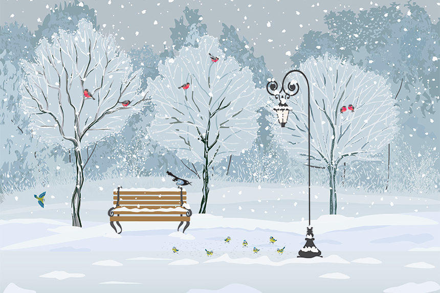 An illustration of a park in winter. The trees are cov