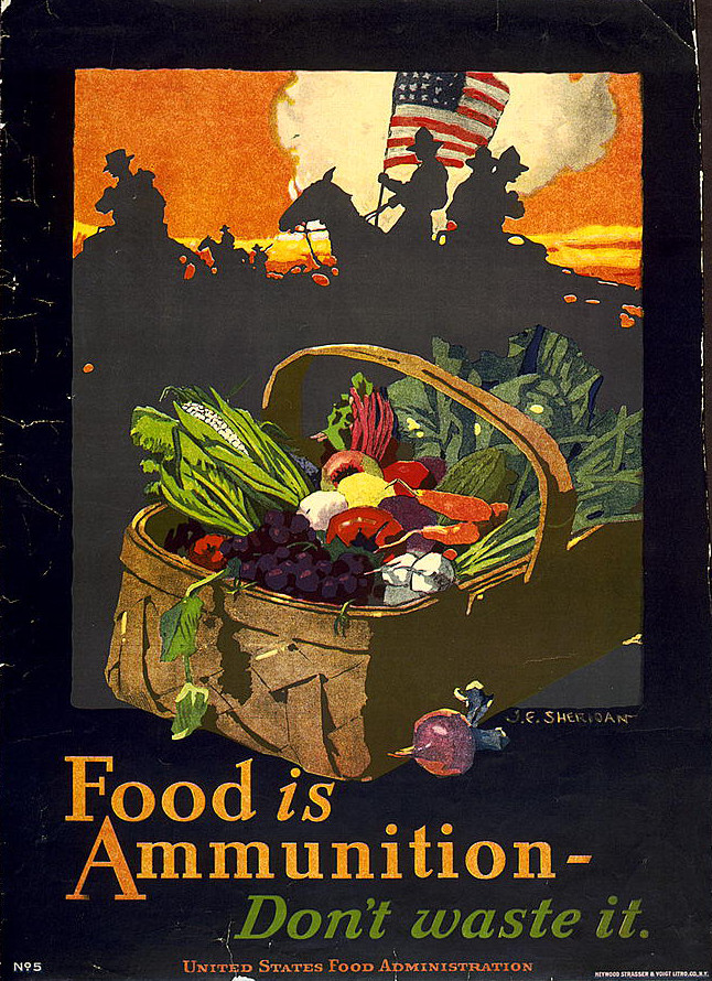 Propaganda poster asking Americans to use food wisely during World War I