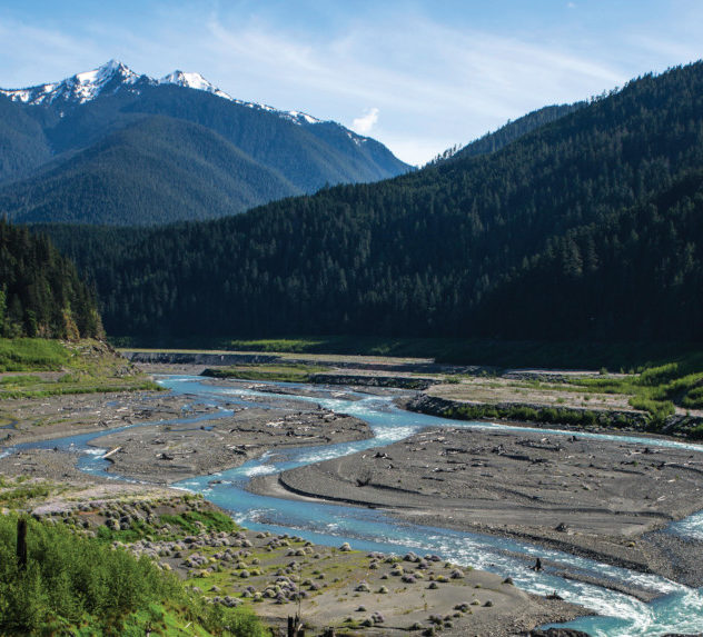 View of the Elwha River
