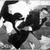 Man attempting - and failing - to swat a cat with a broom.