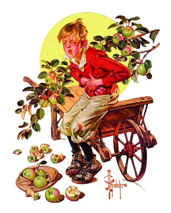 A boy clutches his stomach in pain because he ate too many granny apples.