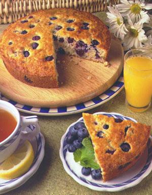 Blueberry Oatmeal Breakfast Cake
