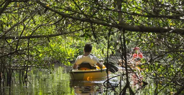 person kayaking on river