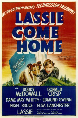 Movie poster for the film Lassie Come Home.