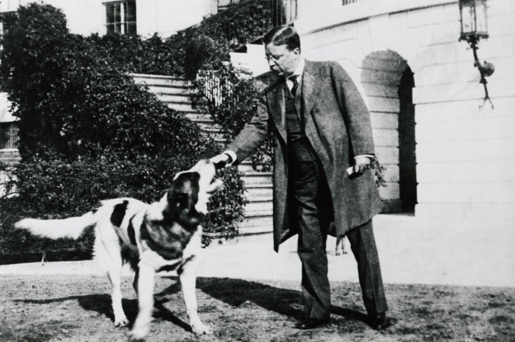 U.S. President Theodore Roosevelt petting his dog, Rollo, at the White House.