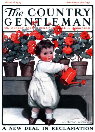 Toddler Watering Geraniums by K. R. Wireman